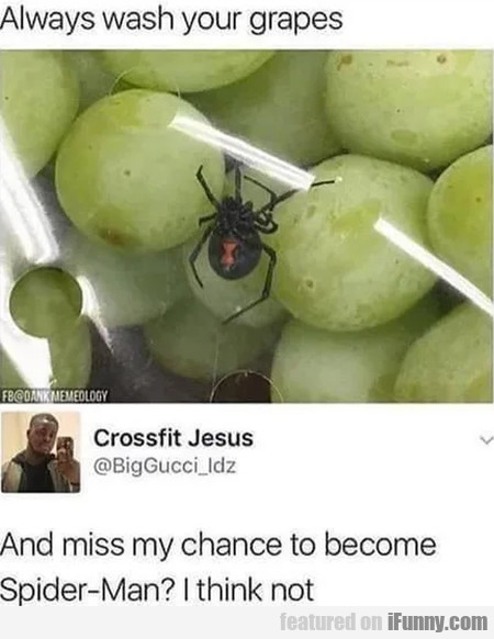 Always Wash Your Grapes - And Miss My Chance...