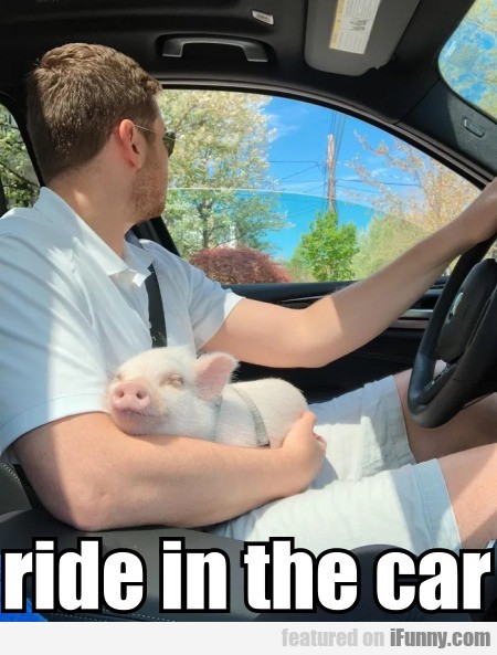 Ride In The Car