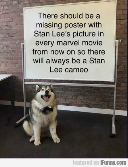 There Should Be A Missing Poster In Stan Lee's