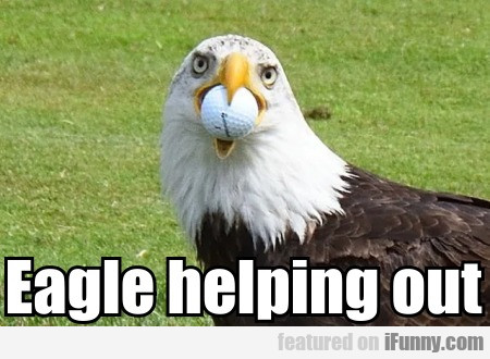Eagle Helping Out