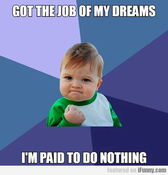 Got the job of my dreams - I'm paid to do...