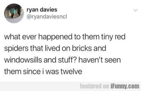 what ever happened to them tiny red spiders...