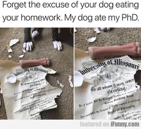 Forget the excuse of your dog eating your...