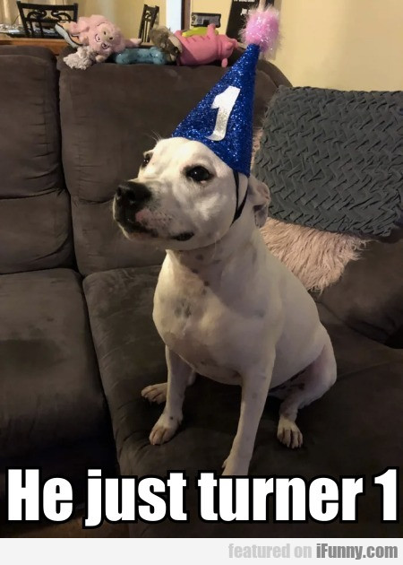 He just turned 1