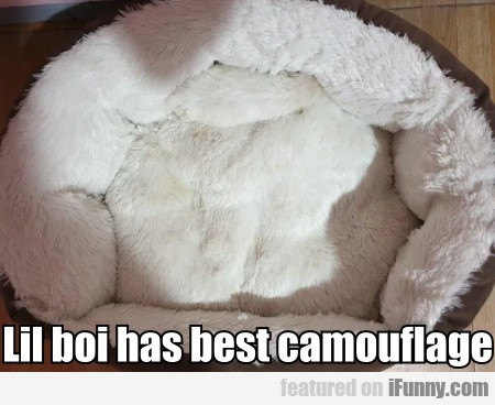 Lil Boi Has Best Camouflage