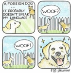 A Foreign Dog... It Probably Doesn't Speak My...