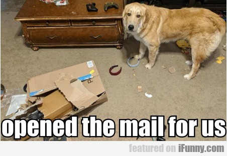 Opened The Mail For Us