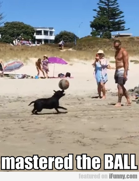 Mastered The Ball