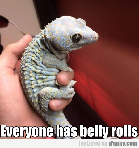 Everyone Has Belly Rolls