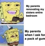 My Parents Renovating My Sisters Entire Bedroom