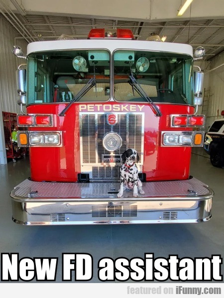 New FD assistant