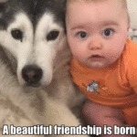 A Beautiful Friendship Is Born
