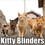 Kitty Blinders
