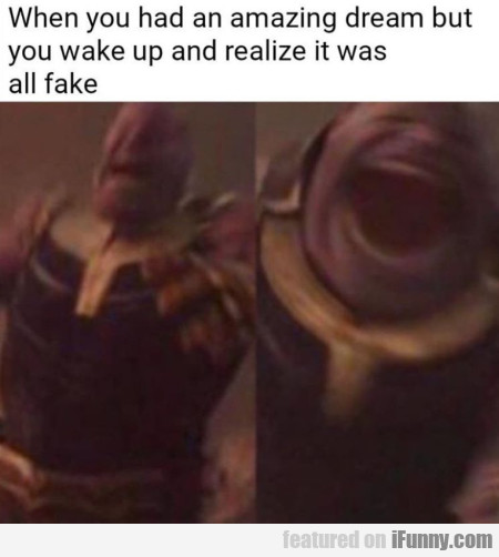 When You Had An Amazing Dream But You Wake