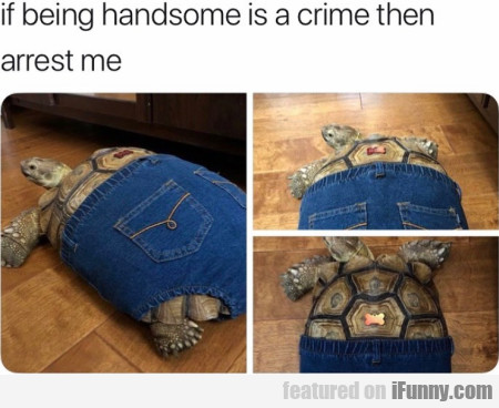 If Being Handsome Is A Crime Then Arrest Me