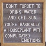 Don't Forget To Drink Water And Get Sun. You're...