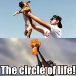 The Circle Of Life!