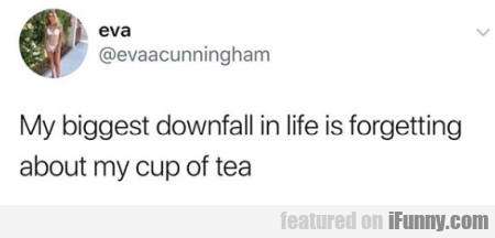 My biggest downfall in life is forgetting about...