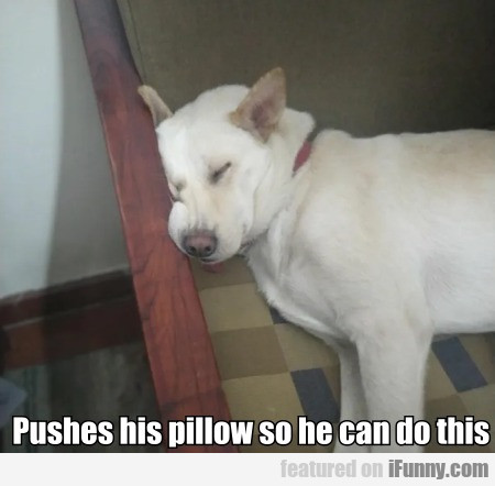 Pushes His Pillow So He Can Do This