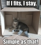 If I Fits, I Stay. Simple As That!