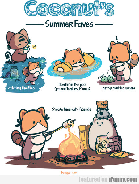 coconut's summer faves