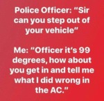 Police Officer - Sir Can You Step Out Of Your...
