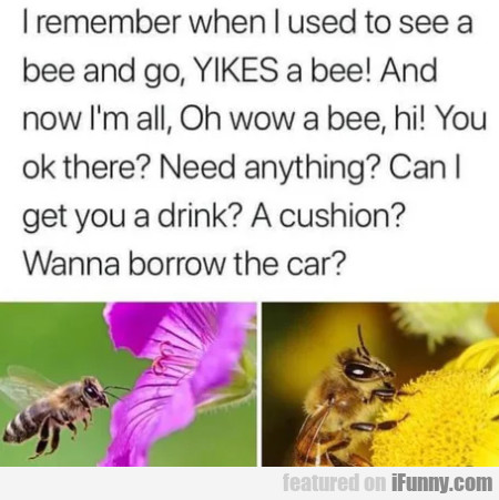 I remember when I used to see a bee and go