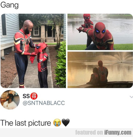 Gang - The Last Picture