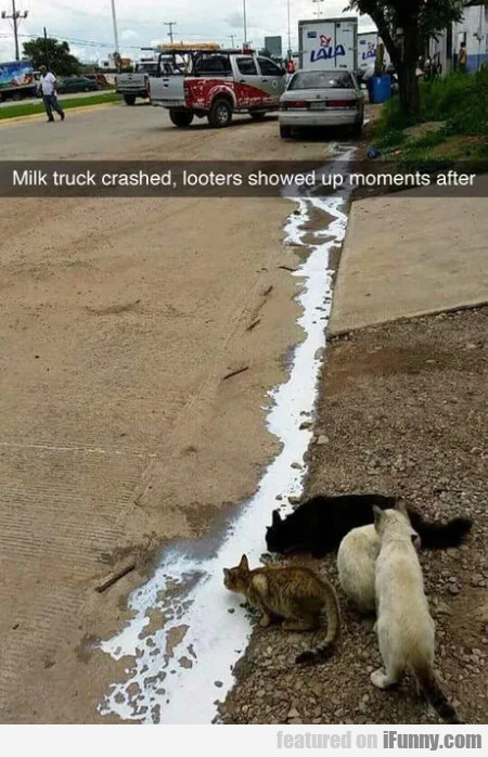 Milk truck crashed, looters showed up