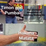 Timon And Pumba - The Emotional Devastation