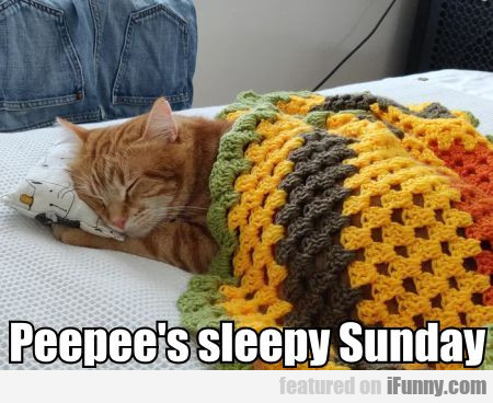 Peepee's Sleepy Sunday
