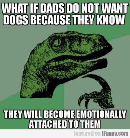 What If Dads Do Not Want Dogs Because They Know