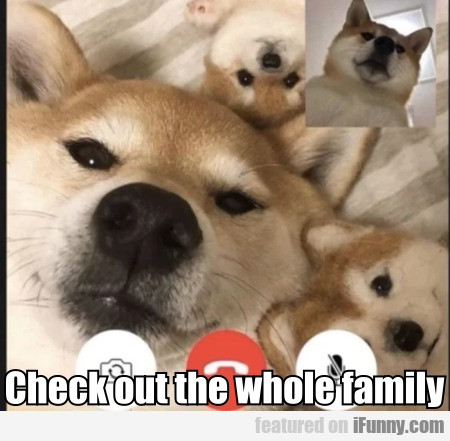 Check out the whole family