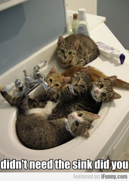 Didn't Need The Sink Did You
