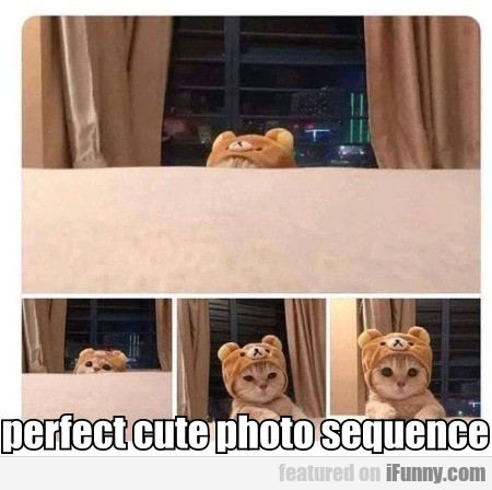 perfect cute photo sequence