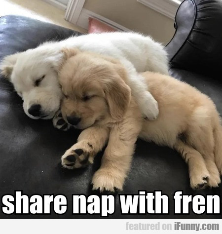 Share Nap With Fren