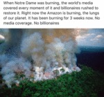 When Notre Dame Was Burning, The World's Media