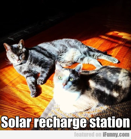 Solar recharge station