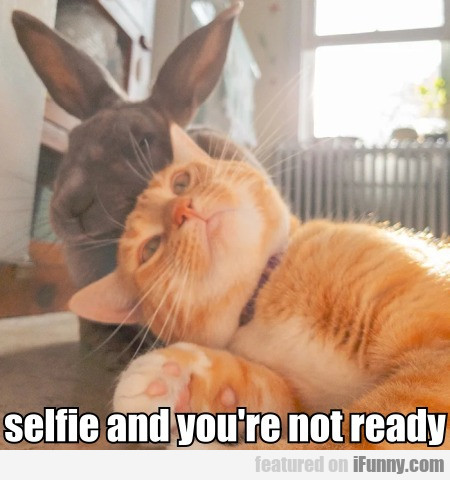 Selfie And You're Not Ready