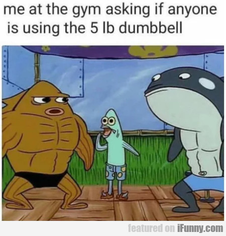 Me at the gym asking if anyone is using the...