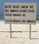 On The Beach And In The Sea, Animals Do