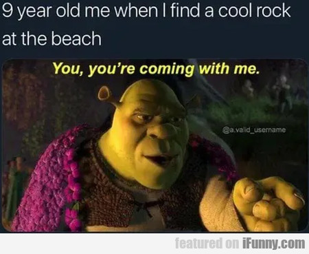 9 Year Old Me When I Find A Cool Rock At The...