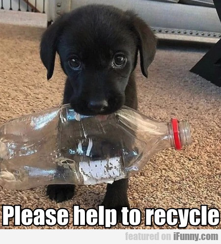 Please Help To Recycle
