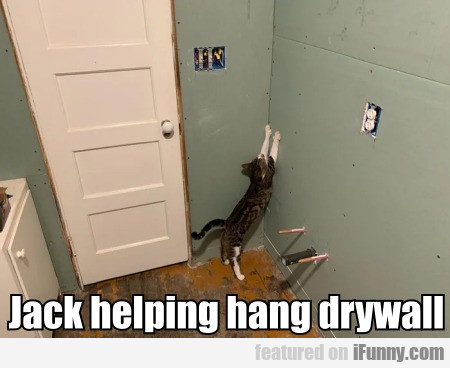 Jack Helping Hang Drywall