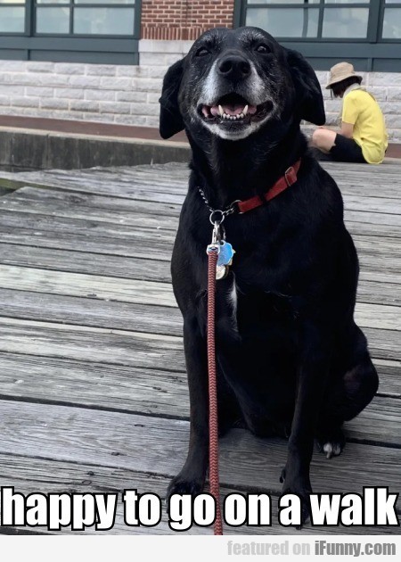Happy To Go On A Walk