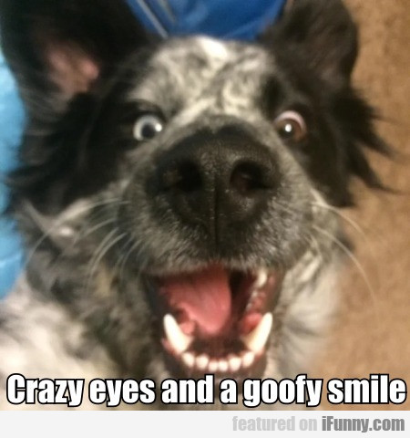 Crazy eyes and a goofy smile