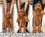 He Also Grew His Smile