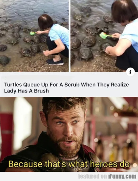 Turtles Queue Up For A Scrub When They Realize