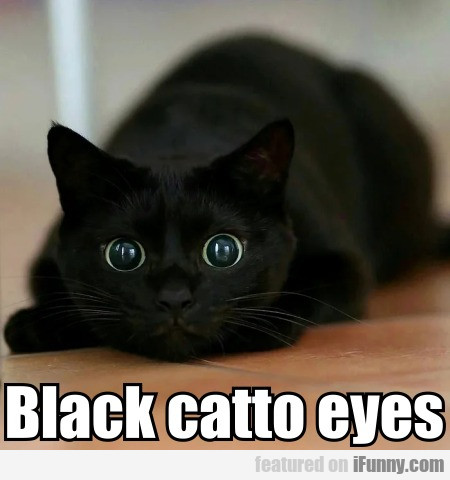 Black Catto Eyes