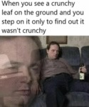 When You See A Crunchy Leaf On The Ground And...